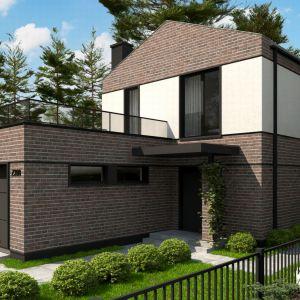 Domy w stylu minimalistycznym. Projekt: Z398. Fot. Z500