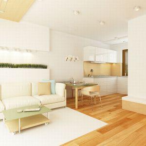 Mały salon. Projekt: Z262. Fot. Z500