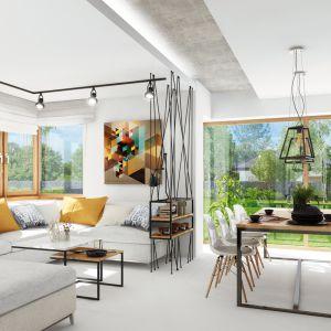 Dom w gaurach 4 (N) – kolekcja: projekty domów parterowych ARCHON+