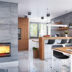 Dom w srebrzykach (G2) – kolekcja: projekty domów małych ARCHON+