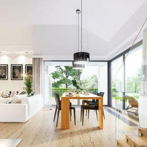 Salon z kominkiem, dzięki otwarciu aż po dach sprawa wrażenie wyjątkowo przestronnego. Duże przeszklenia płynnie łączą dom z ogrodem i zapewniają potężną dawkę promieni słonecznych. Projekt: arch. Michał Gąsiorowski. Fot. MG Projekt