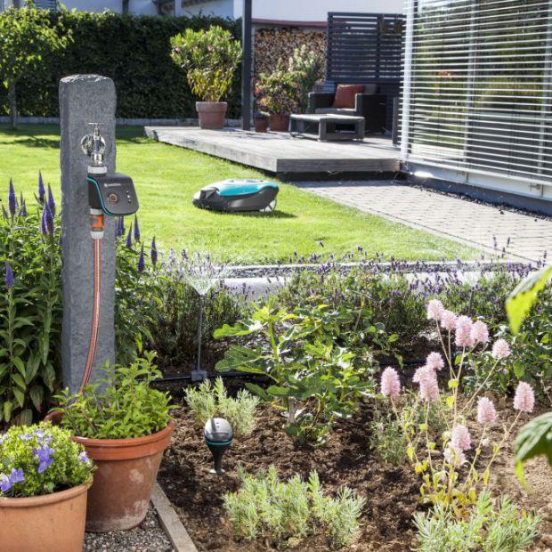 Smart dom: kontroluj swój ogród za pomocą telefonu