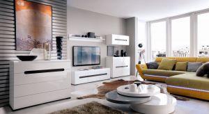 Białe meble cieszą się dużą popularnością. Z ich pomocą można urządzić salon w każdym stylu.