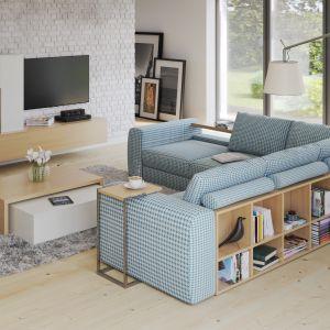Narożnik Biblio posiada półki umieszczone z tyłu mebla. Dzięki temu model jest atrakcyjny i warto ustawić go na środku salonu. Fot. Caya Design