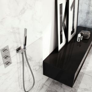Armatura łazienkowa: kolekcja Nexen. Fot. Kohlman