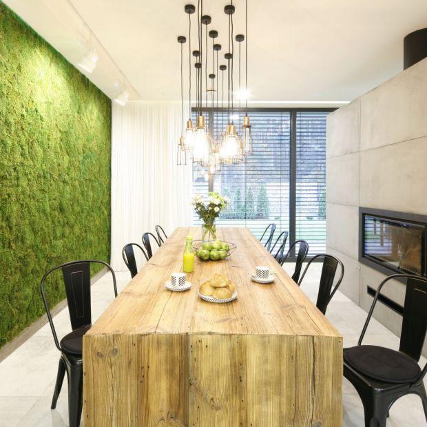 Rośliny we wnętrzach: zobacz pomysły projektantów