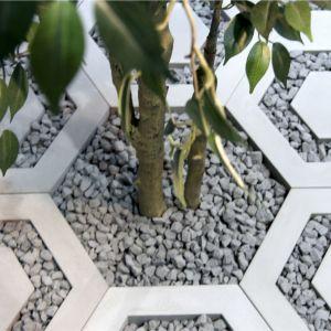 Modern Line to płyta ażurowa heksagonalna. Pozwala na tworzenie ciekawych wzorów. Dobrze prezentuje się na skwerkach, dużych parkingach, w przestrzeni prywatnych ogrodów i tarasów. Jest alternatywą dla metalowych kratownic stosowanych wokół drzew. Fot. Bruk