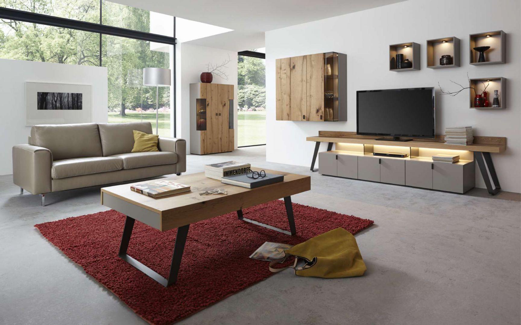 Kolekcja Nola doskonale uzupełni nowoczesny salon. Fronty kolekcji ozdobią wnętrze surowymi rysunkami drewna. Fot. Kler