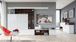 Nowoczesne wnętrza są minimalistyczne i bardzo zachowawcze. Wybierając meble, warto zwrócić uwagę na kolekcje w bieli oraz szarościach, które doskonale wpiszą się w taką stylistykę salonu.