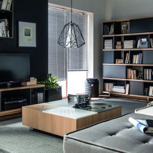 Kolekcja Balance to meble w modnych szarościach. Jasne elementy drewna ożywiają kolekcję. Fot. Meble Vox