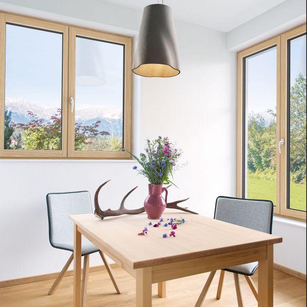 Okno drewniano-aluminiowe HF 410/Internorm