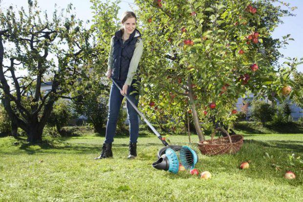 Lato w ogrodzie. Wygodne narzędzia do zbierania owoców