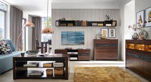 Chcąc urządzić salon, warto sięgnąć po meble z rysunkiem drewna. To niezawodny sposób na przytulne i eleganckie wnętrze.