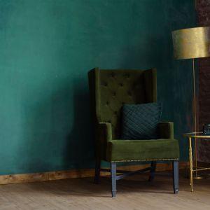 Zielony we wnętrzu. Fot. Franc Gardiner