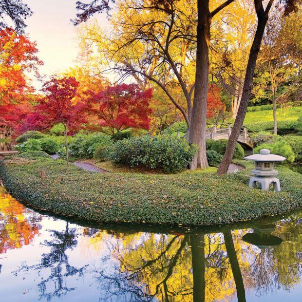 Aranżacja ogrodu: modne kolory na jesień i zimę