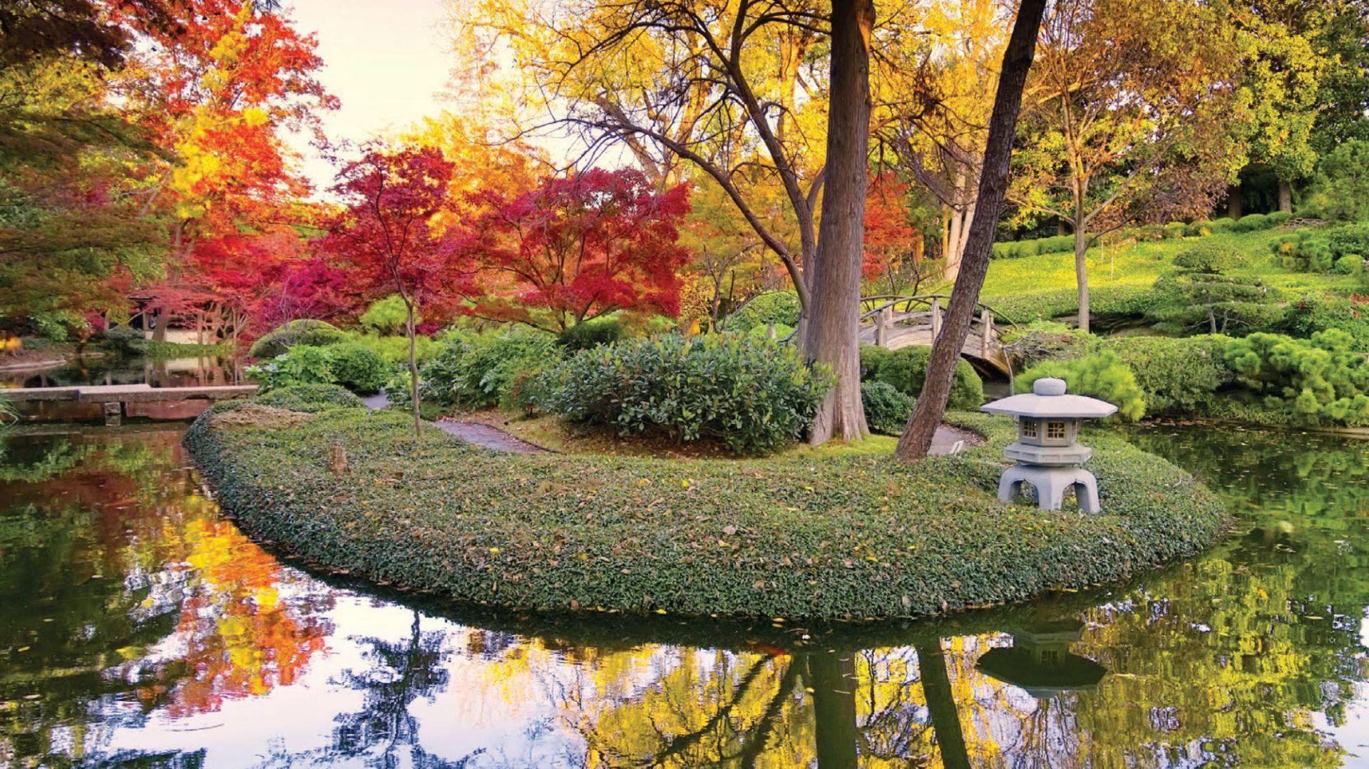 Modne kolory w ogrodzie na 2017 rok. Fot. Altax Viva Garden