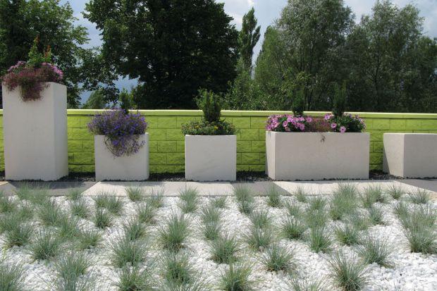 Odpowiednio dobrane i zadbane rośliny nie tylko stanowią ozdobę przydomowej przestrzeni, ale mogą też cieszyć pięknym zapachem, dostarczać owoce czy gwarantować cień w upalne dni.