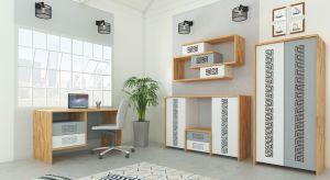 Zestaw VISION wykonany jest z metalu i uzupełniony oryginalnymi elementami drewnianymi oraz ciekawą perforacją frontów. Stanowi doskonałe wyposażenie minimalistycznego i jednocześnie nowoczesnego pomieszczenia. Produkt zgłoszony do konkursu Dobry