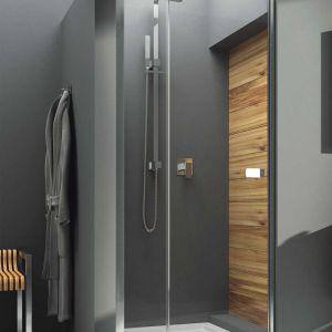 Kabina prysznicowa: praktyczne modele, łatwe w czyszczeniu. Fot. Aquaform
