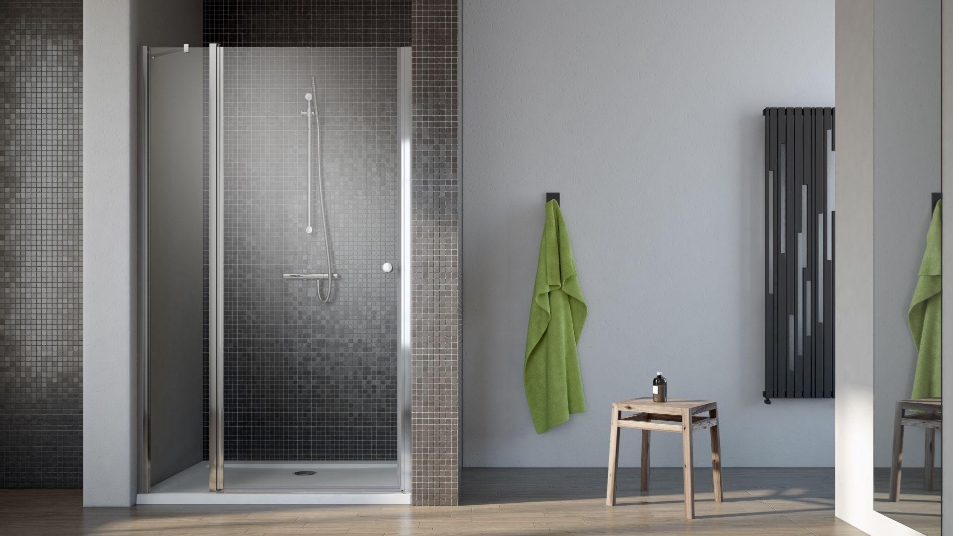 Drzwi prysznicowe EOS 2 DWJ. Fot. Radaway