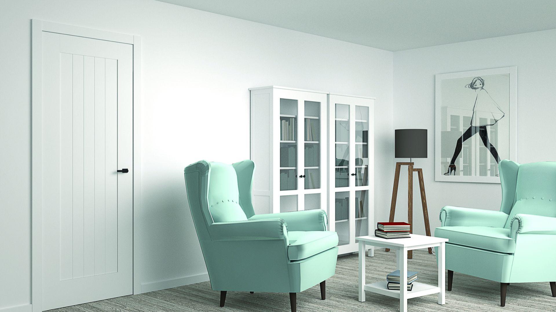 Drzwi Asilo, model SKANDIK/Entra. Produkt zgłoszony do konkursu Dobry Design 2018.