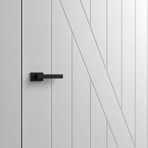 Drzwi Asilo, model VILLAGIO/Entra. Produkt zgłoszony do konkursu Dobry Design 2018.