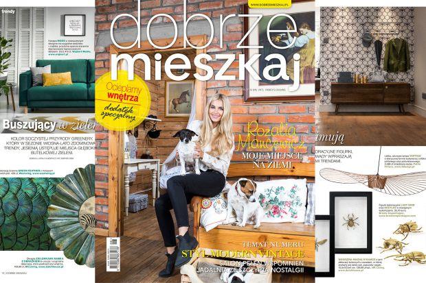 Magazyn Dobrze Mieszkaj 6/2017 - nowy numer  już w sprzedaży