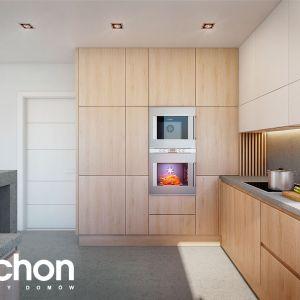 Dom w amorfach – kolekcja: nietypowe projekty domów ARCHON+
