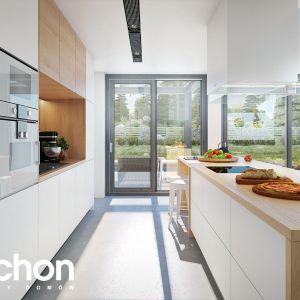 Dom w estragonie – kolekcja: projekty domów z wejściem od południa ARCHON+