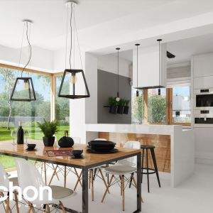 Dom w gaurach 4 N  - kolekcja projekty domów parterowych ARCHON+