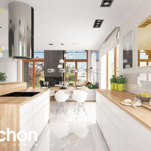 Dom w pierwiosnkach 2 (G2) – kolekcja: projekty domów z antresolą ARCHON+
