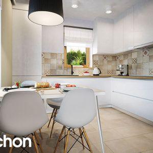 Dom w poziomkach 4 – kolekcja projekty małych domów ARCHON+