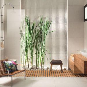 Nowoczesne płytki do łazienki. Kolekcja Graniti (white) z linii Livingstone. Fot. Tubądzin