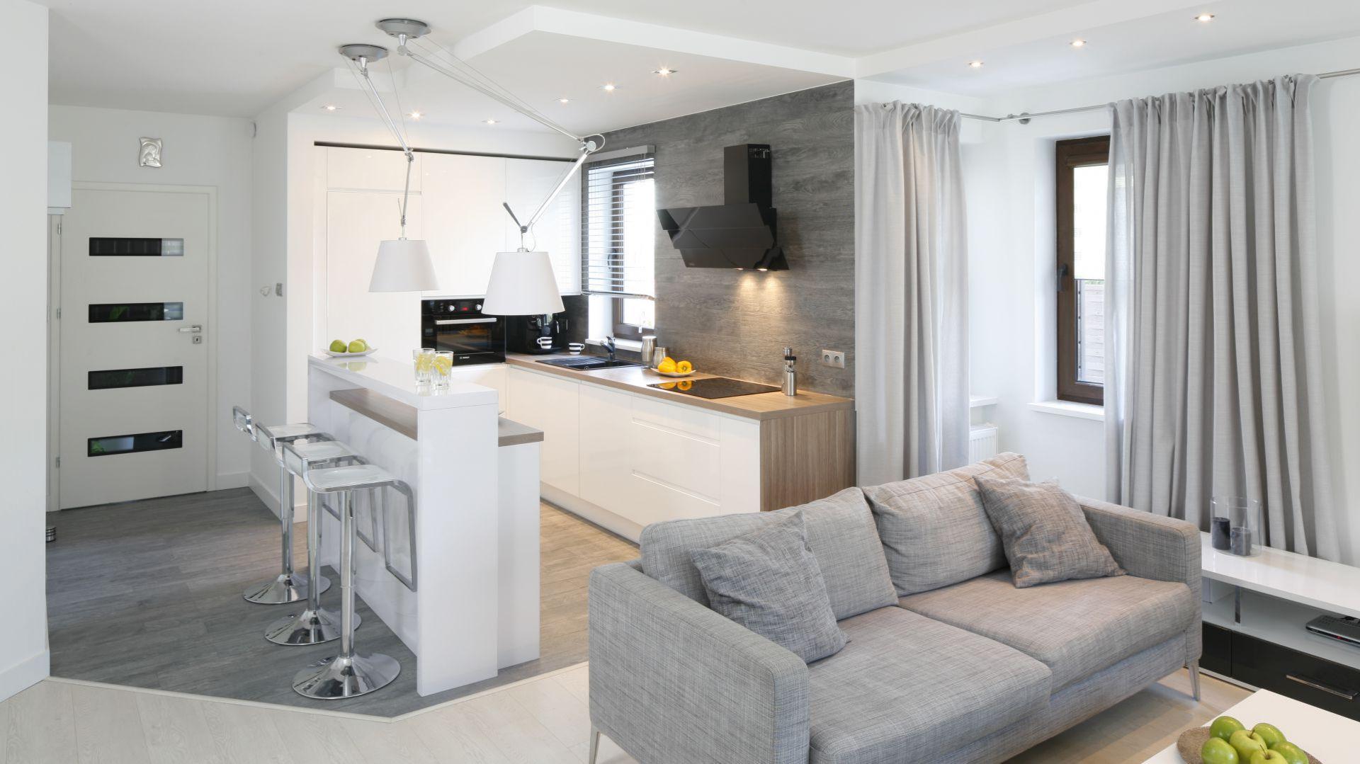 Salon z aneksem kuchennym salon z aneksem kuchennym for Salon cuisine ouverte 45m2