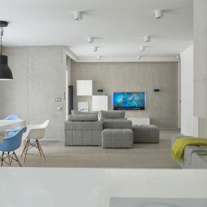 Salon w szarościach. Projekt: Monika i Adam Bronikowscy. Fot. Hola Design