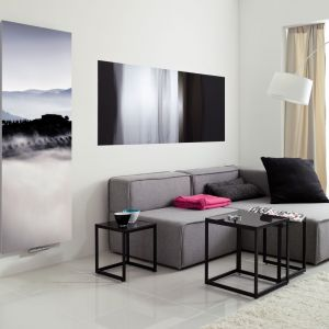 Dzięki ekranom z dekoracyjnymi nadrukami grzejnik Inventio można zamienić w fotografię lub obraz. Fot. Instal-Projekt