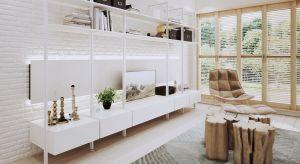 Ponadczasowy charakter lekkiego systemu do zabudowy sprawia, że sprawdzi się on w każdym wnętrzu – garderoby, salonu, kuchni, przedpokoju czy nawet pomieszczenia gospodarczego.