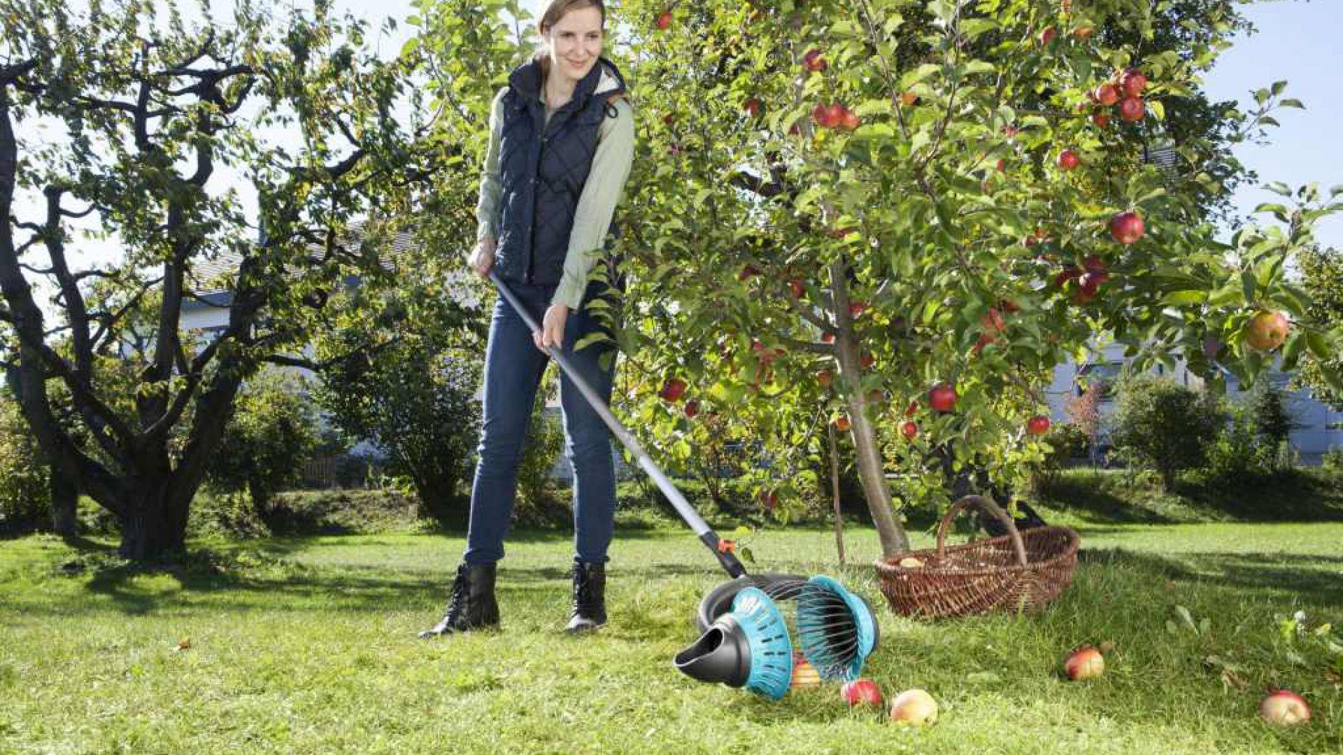 Zbieraczka do owoców. Fot. Gardena