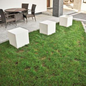W nowoczesnych projektach ogrodów świetnie sprawdzą się elementy małej architektury: sześcian. Fot. Libet
