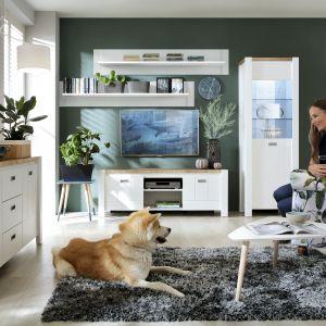 Salon w stylu skandynawskim: meble z kolekcji Dreviso. Fot. Black Red White