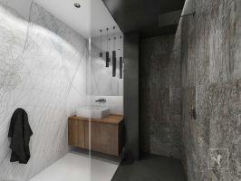 W łazience dla gości znalazło się miejsce na natrysk. Projekt: Marcin Gałuszka, Marcin Janus, Frog Studio