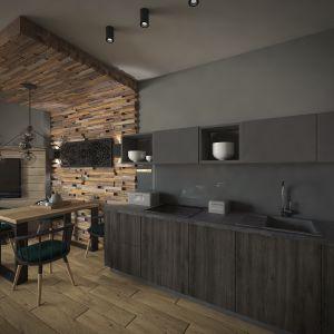 Aneks kuchenny dyskretnie wkomponowano w przestrzeń. Projekt: Beata Wołkowska, VIVINO Studio