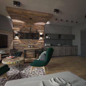 W mieszkaniu znalazło się miejsce na aneks kuchenny, spory stół, a także wygodne miejsce na telewizor, z kolorowymi fotelami. Projekt: Beata Wołkowska, VIVINO Studio