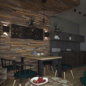 Jadalnia i aneks kuchenny. Projekt: Beata Wołkowska, VIVINO Studio