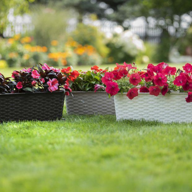 Funkcjonalne dodatki do ogrodu i na balkon