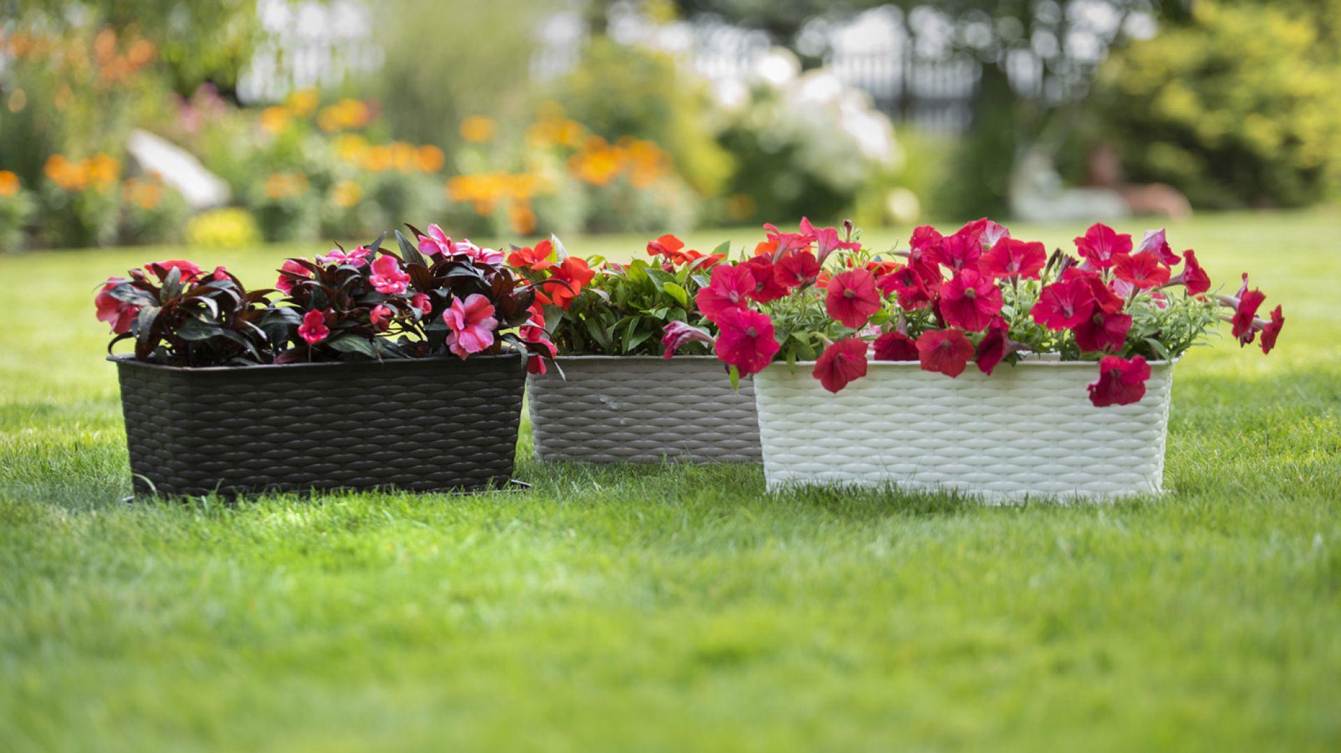 Dodatki do ogrodu i na balkon. Fot. Galicja dla Twojego Domu