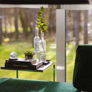 Sofa w modnym szmaragdowym kolorze i soczysta zieleń za oknem. Projekt: Edyta Wełnicka / ewem Aranżacja wnętrz