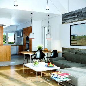 Dom o powierzchni użytkowej 83 metrów pomieścił salon o metrażu blisko 25 metrów. Proj. Dom w nerinach. Fot. Archon +