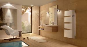 Prysznic czy kąpiel będą jeszcze bardziej relaksujące dzięki grzejnikowi, który otoczy nas ciepłem i nastrojową muzyką, a w dodatku jest delikatnie podświetlony diodami LED.