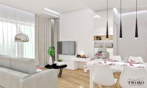 Salon z wydzieloną strefą jadalni